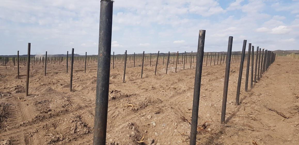 postes en viña