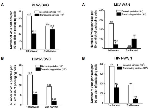 "2017. Soo-hyun Kim, and Kwang-il Lim*. ""Stability of retroviral vectors against ultracentrifuga"