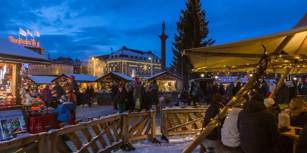 Onboard Norway Digital Meeting on 'Staying in Trondheim over Christmas'  (1)