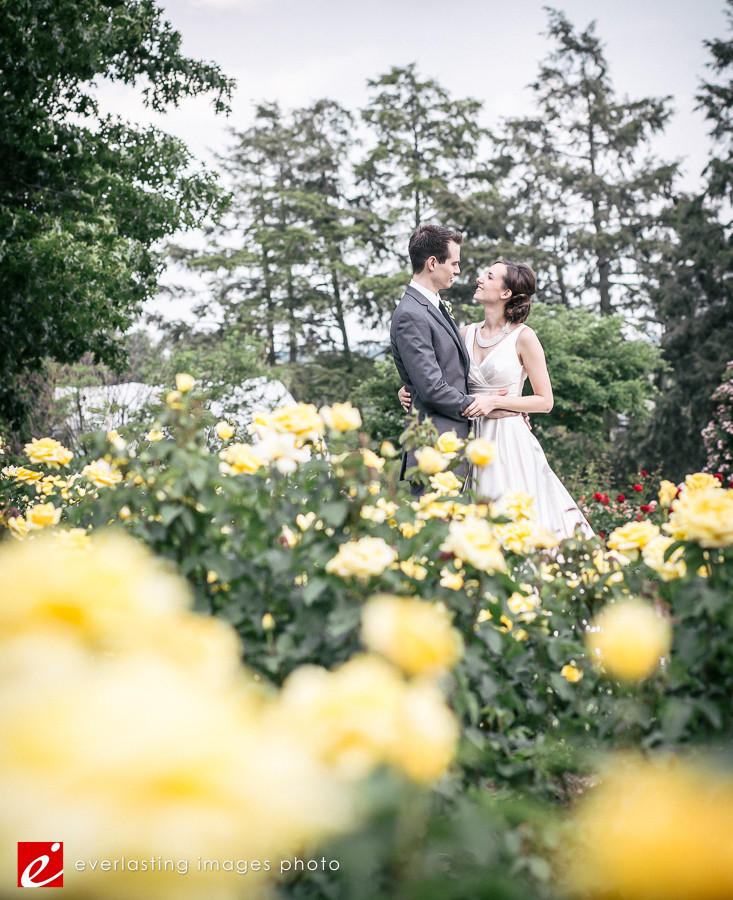 yellow flowers Hershey Gardens Wedding weddings photography photographer pictures outdoor pics