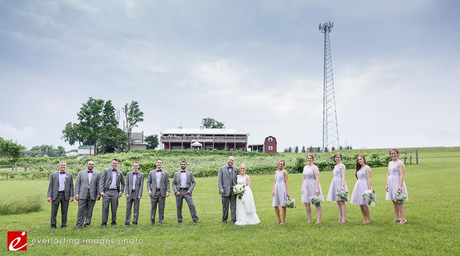 Vineyard of Hershey Weddings, Hershey vineyard wedding pictures, wedding photos Hershey, Hershey winery wedding, Hershey wedding photos