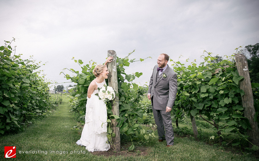Vineyard of Hershey Weddings, Hershey vineyard wedding pictures, wedding photos Hershey, Hershey winery wedding, Hershey wedding photos
