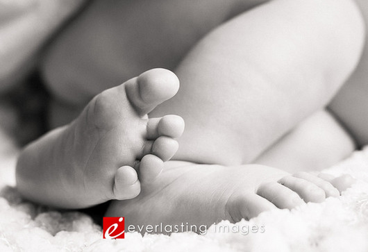 Newborn Portrait, Baby Photos, Maternity, Hershey photographer_018.jpg