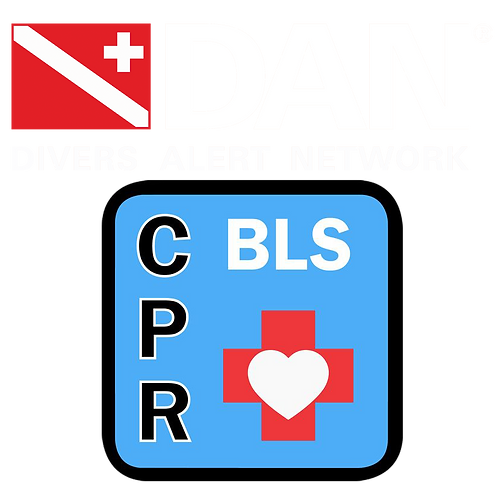 DAN Basic Life Support: CPR & First Aid Course