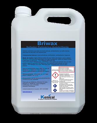 BRIWAX - Sellador polimérico Autobrillante