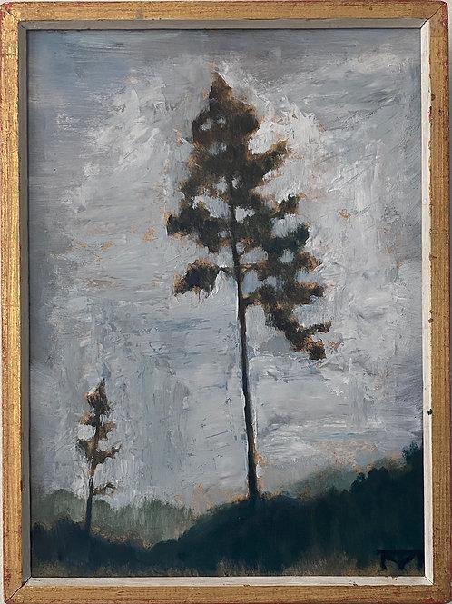 Big Pine Little Pine