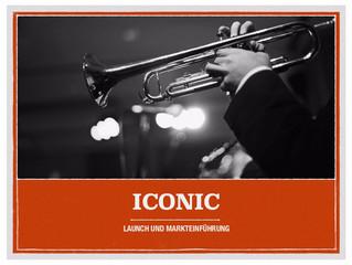 Konzepte und Pläne zur Markteinführung von Iconic