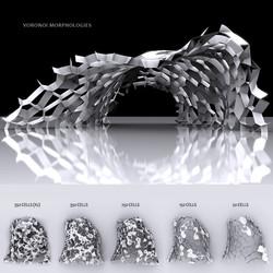 Araullo Voronoi Morphologies