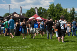 2014 LSVL Pints in the Park--42.jpg
