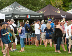 2016 Pints in the Park  (9 of 13)