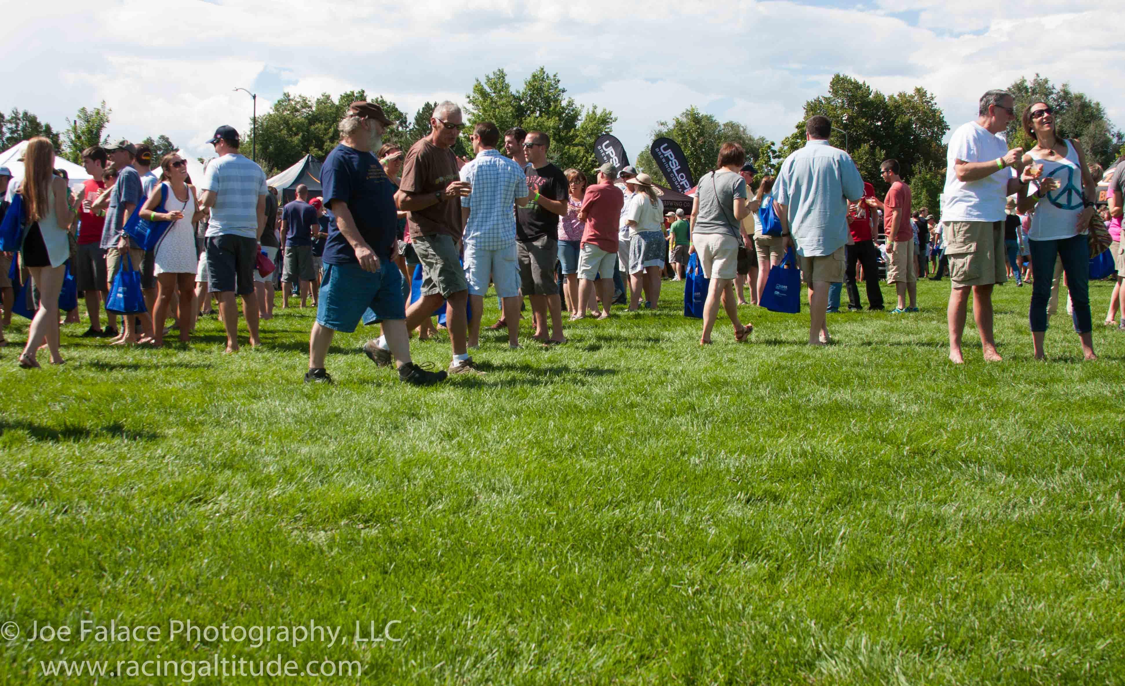 2014 LSVL Pints in the Park--122.jpg