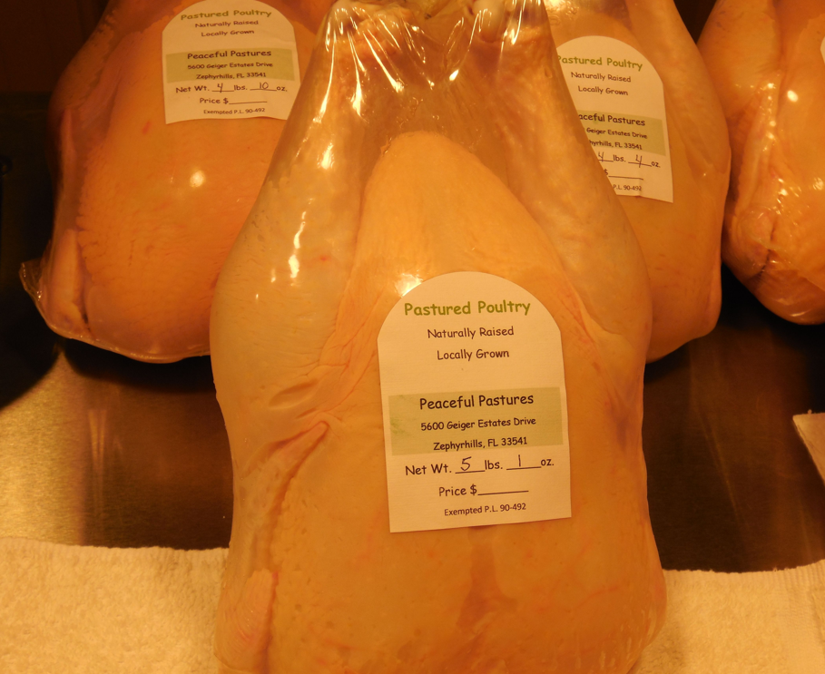Pastured poultry fresh from Florida!