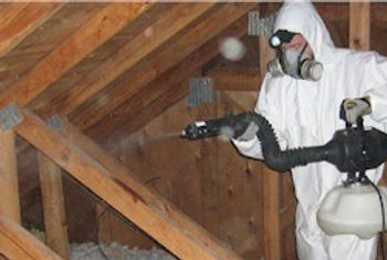 attic-decontamination.jpg