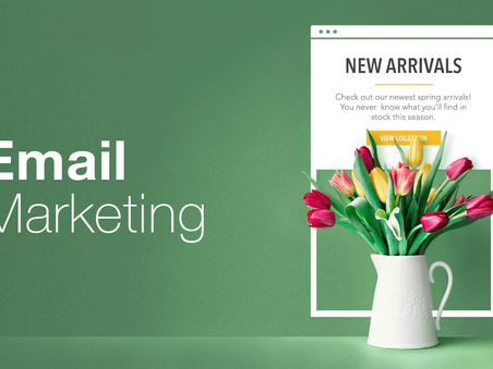 Email Marketing Like a Pro