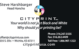 Business cards online low cost shippingsatisfaction guaranteed business cardsheavy stockfull colorfast turnaroundfolded business cards colourmoves