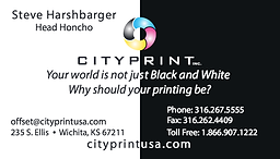 Business cards|heavy stock|full color|Fast turnaround|folded business cards|100% satisfaction guarantee