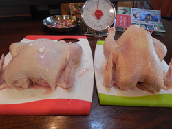 Ours broiler is on the right.