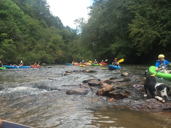 Nearby - Whitewater Rafting