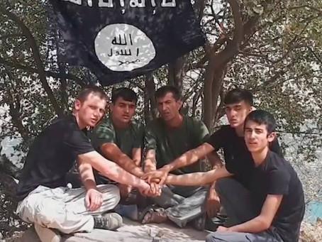 Propagande pro-terroriste?