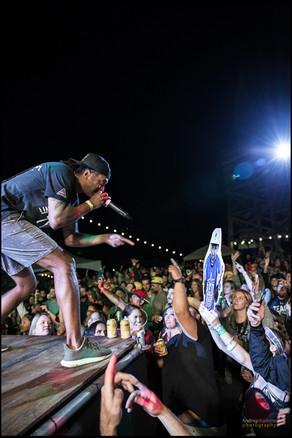 Swollen Members - 5 Acre Festival