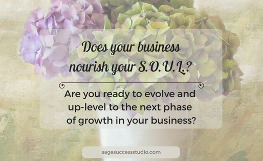 Does Your Business Nourish Your S.O.U.L.?
