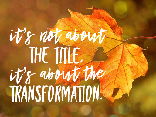 It's Not About the Title, It's About the Transformation