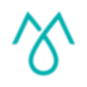 Momentum Logo-Color-C.png