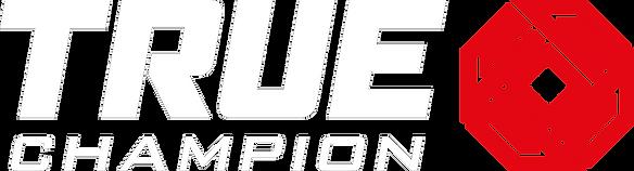 logo-2-v3 white.png