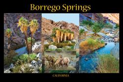 Borrego_Springs_web_2013