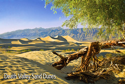 49_Death_Valley_New_web