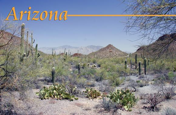 45_Arizonacard2