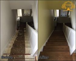 Dark oak on stairs