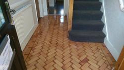Colombian pine flooring