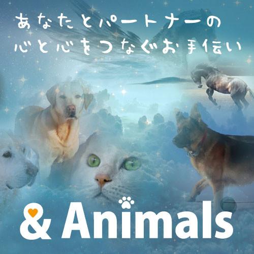 あなたとパートナーの心と心をつなぐお手伝い &Animalsのよしまろです