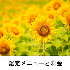 鑑定メニューと料金.jpg