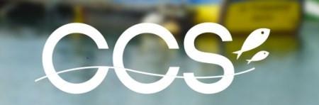 Logo Conseil Consultatif Sud