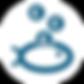 Picot économie | Blue Fish France