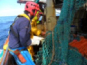 Ramendage des filets à bord   Blue Fish France