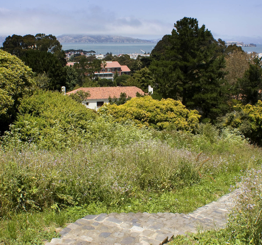 7c-Presidio-Heights-PresidioPark61-1024x