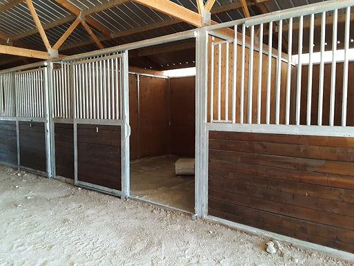 Box Stall + Outdoor Run