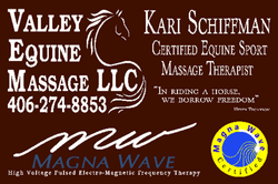 Valley Equine Massage logo