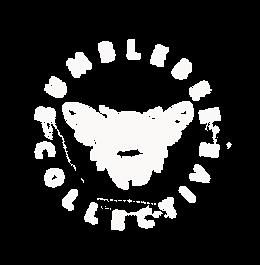 Bumblebee Roundel - transparent.png