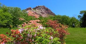 昭和新山は生きている。