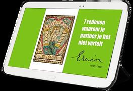 ebook Relatiecoach Erwin