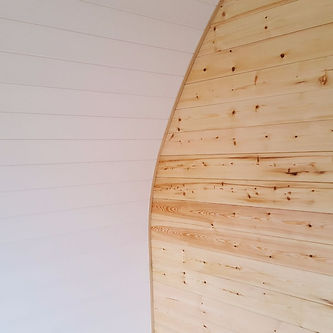 Treated pine wood cladding.jpg