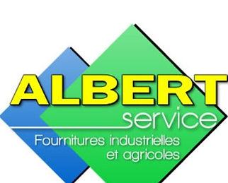 ALBERT_SERVICE.jpg