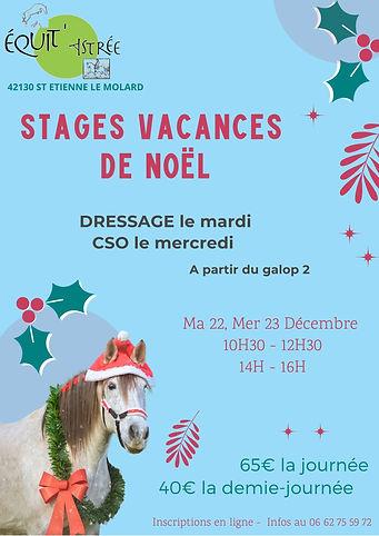 Stage de Noël compet.jpg