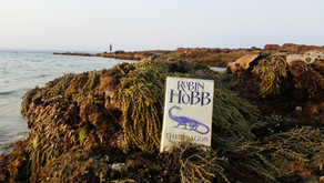 Review | The Dragon Keeper | Robin Hobb