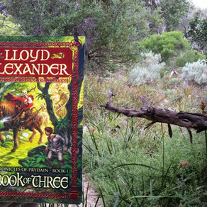 Review   The Book of Three   Lloyd Alexander