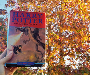 Harry Potter and the Goblet of Fir by JK Rowling